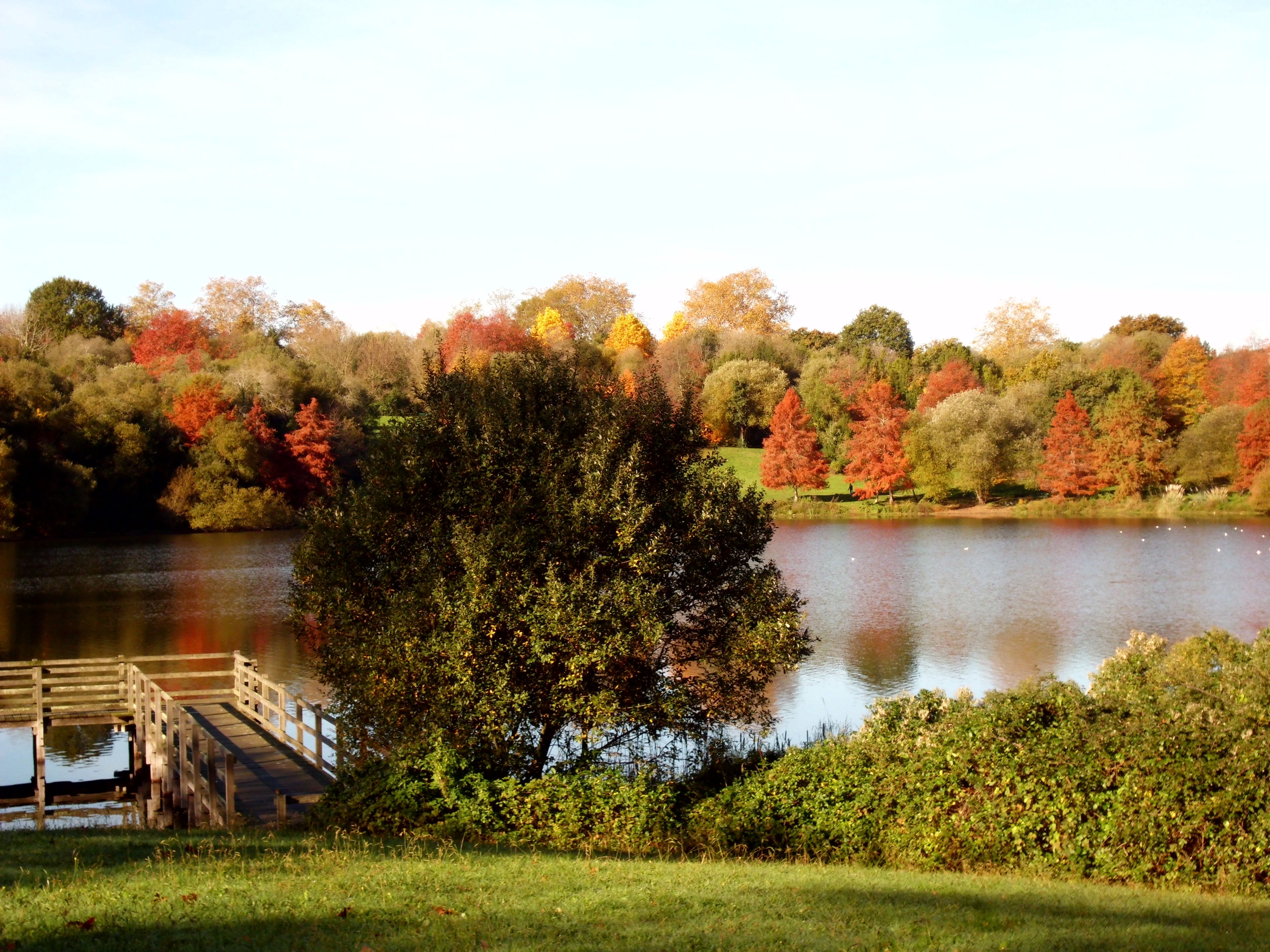 Lac Marion 61129e13d8891ba7400a5e1a6abdabb8