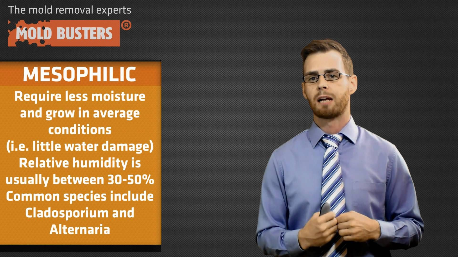 Basic mold facts. Please share. mold facts Facts, How
