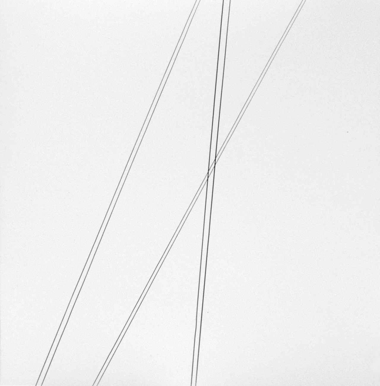 Harry Callahan Telephone Wires