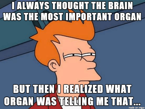Meme Cartoon Ialways Thought The Brain Was The Most Important Organ But Then O Realized What Organ Was Telling Me That Silly Memes New Memes Funny Pictures