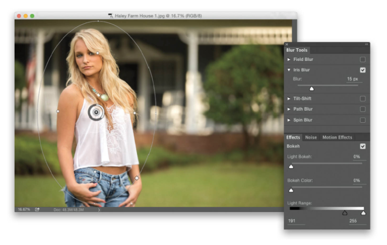 The Photoshop Elements 13 Book for Digital Photographers ...