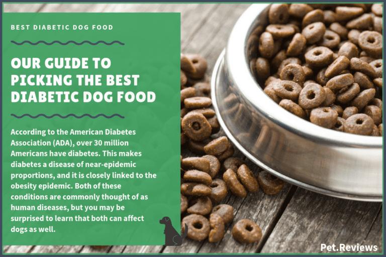 Top 10 Dog Treat Recipes 2019 Easy Homemade Recipes