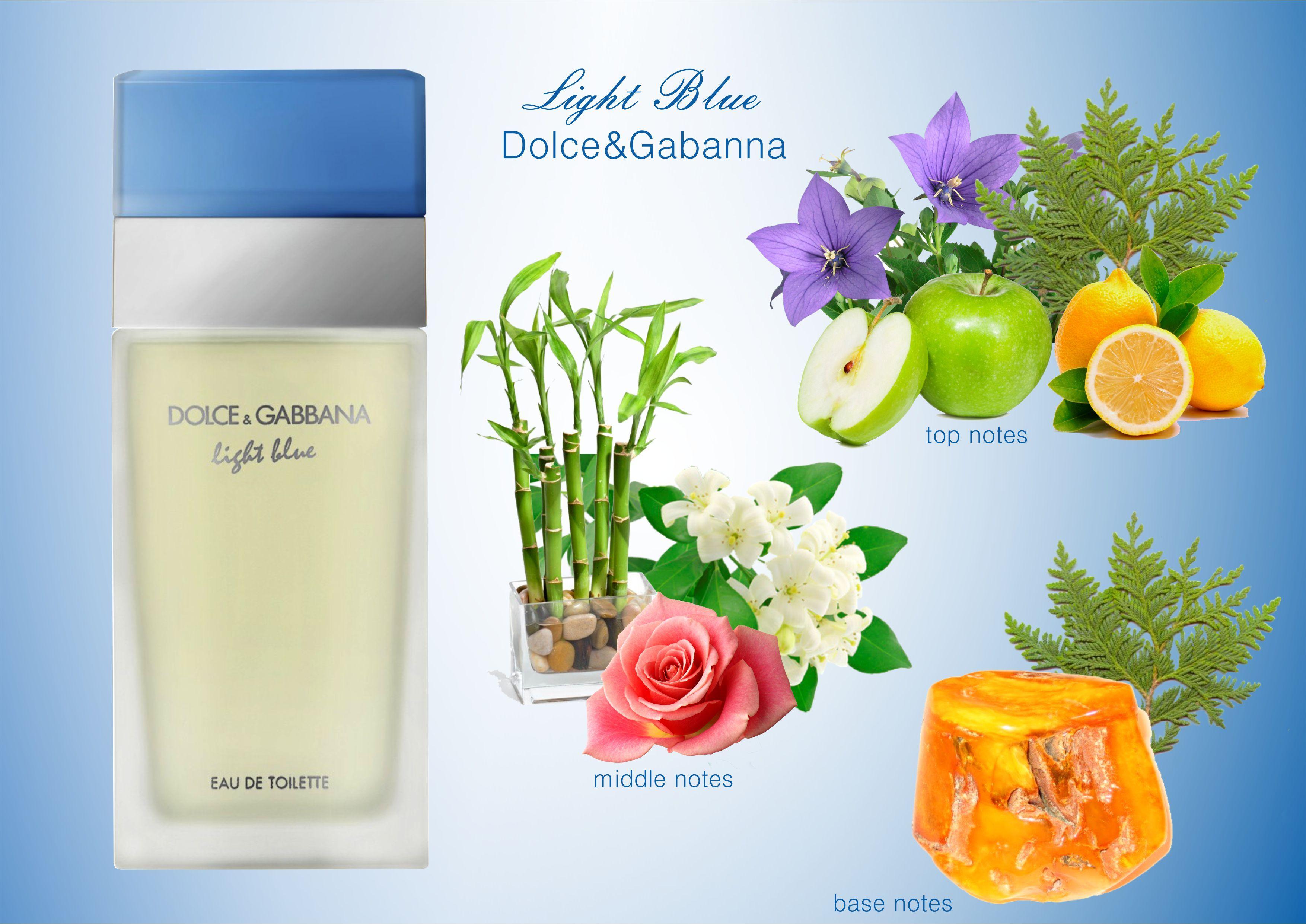 Dolce Gabbana Light Blue Fragrances Perfume Woman Homemade Perfume Perfume Lover