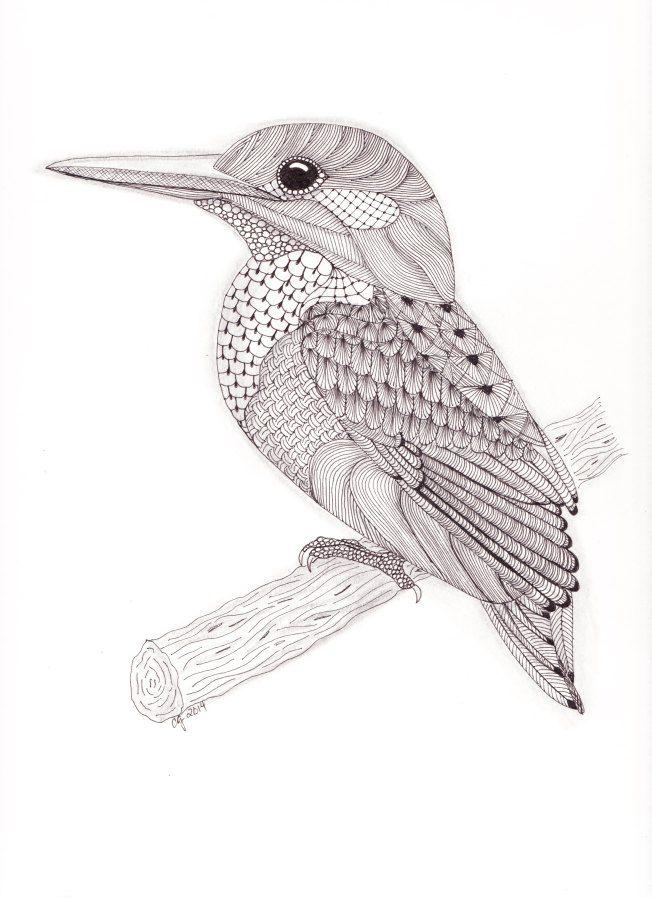 tangled kingfisher zentangle drawings bird drawings birds
