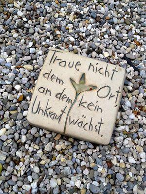Photo of Ganz meine Meinung… »Gartenpraxis, Lebensraum Garten