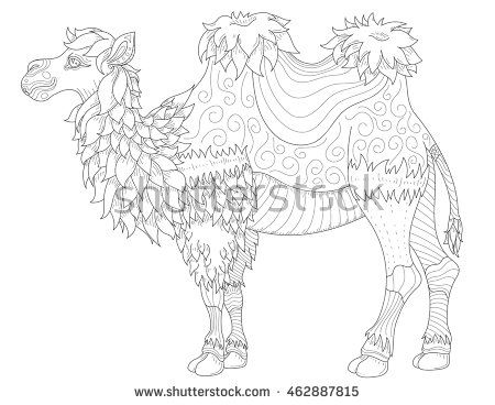 Vector Anti Stress Coloring Book Page For Adult With Animal Camel Zentangle Style Illustration High Details Isolated On White Background Monochrome