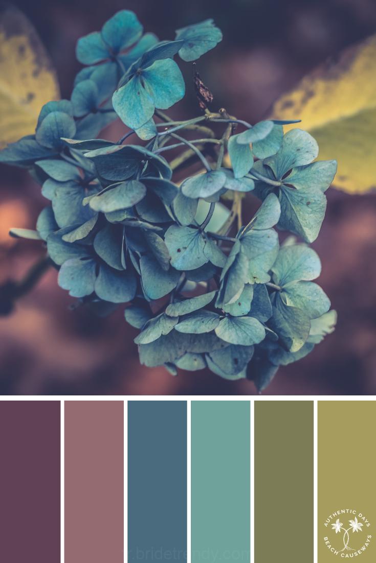 Photo of Blaue Blütenblätter, Bunt, Inspiration | Inspirierende Farbpalette – #blaue #b…