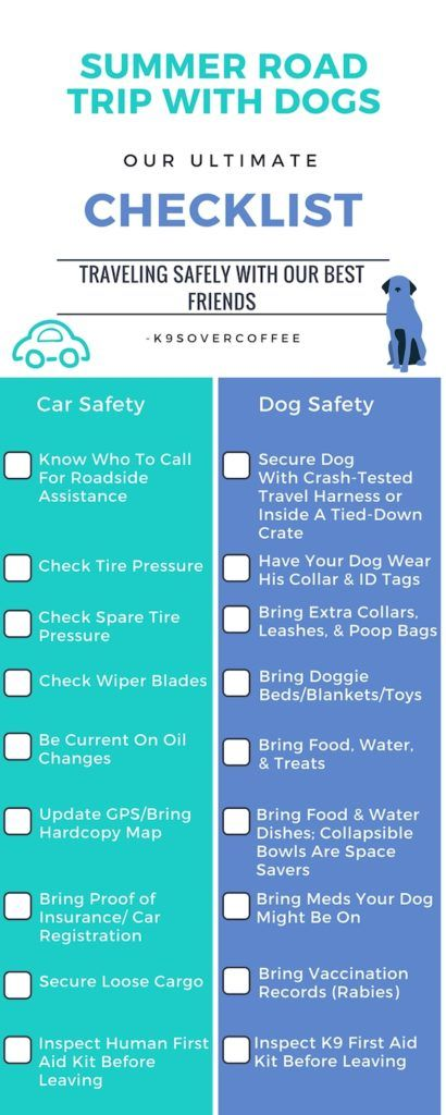 Summer Road Trip With Dogs – Our Ultimate Checklist