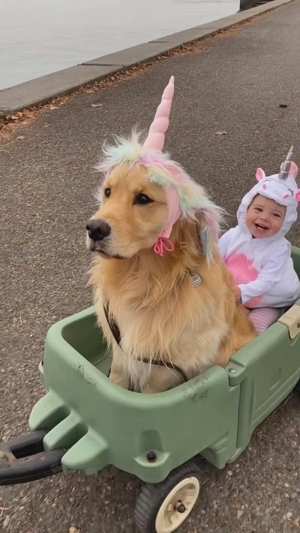 2020 needs some unicorns