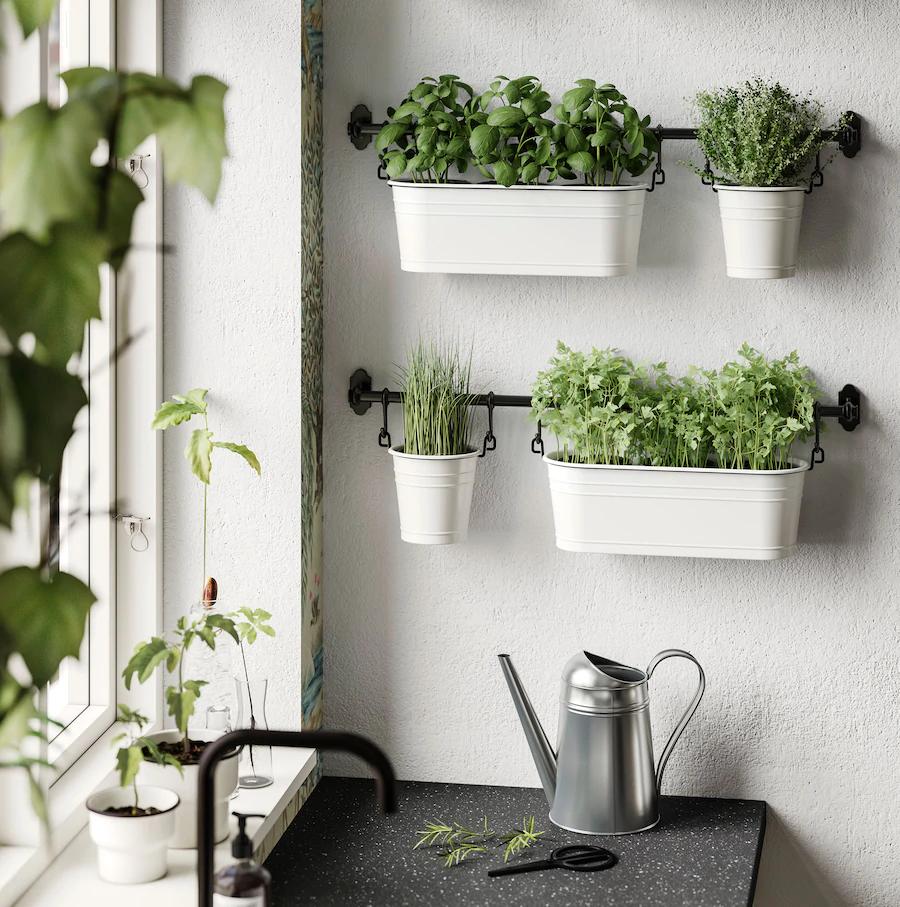 cosy cottage kitchen in the big city in 2020 kitchen plants herb garden in kitchen kitchen herbs on outdoor kitchen herb garden id=99237