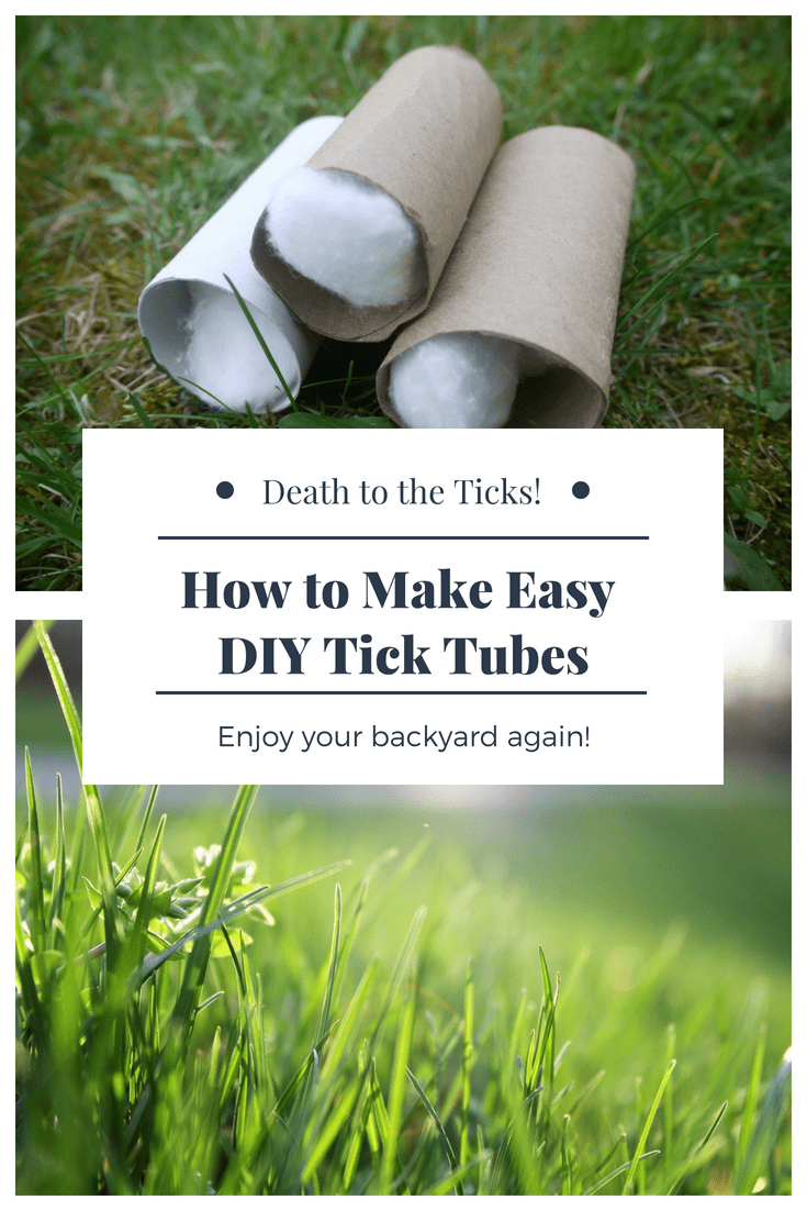 How To Make Tick Tubes And Protect Your Yard With Images Tick