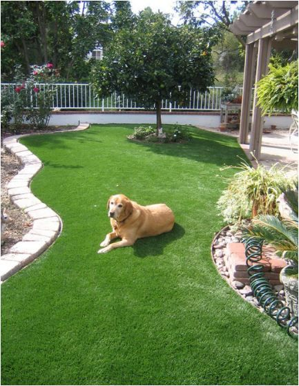 Easy care backyard landscaping easy care pet friendly for Easy care landscaping ideas