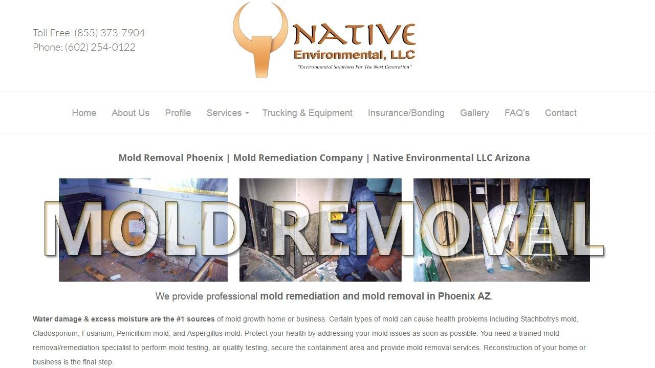 Mold Removal Phoenix Mold Remediation Company Native