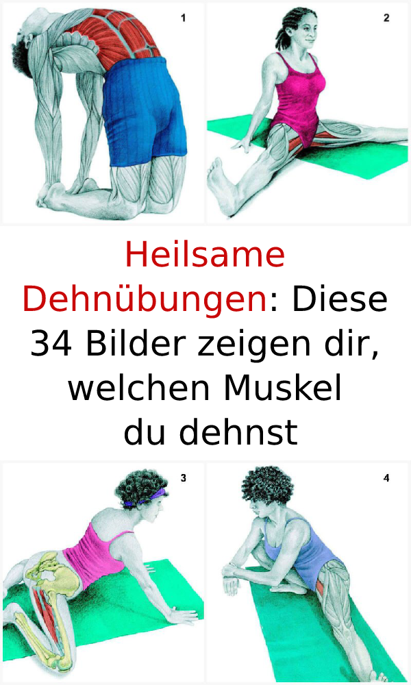 Heilsame Dehnübungen: Diese 34 Bilder zeigen dir, welchen Muskel du dehnst #Hei... - #Bilder #dehnst...