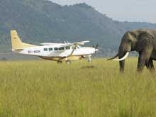 Lewa Wildlife Conservancy: Travel Tips (getting to Lewa)