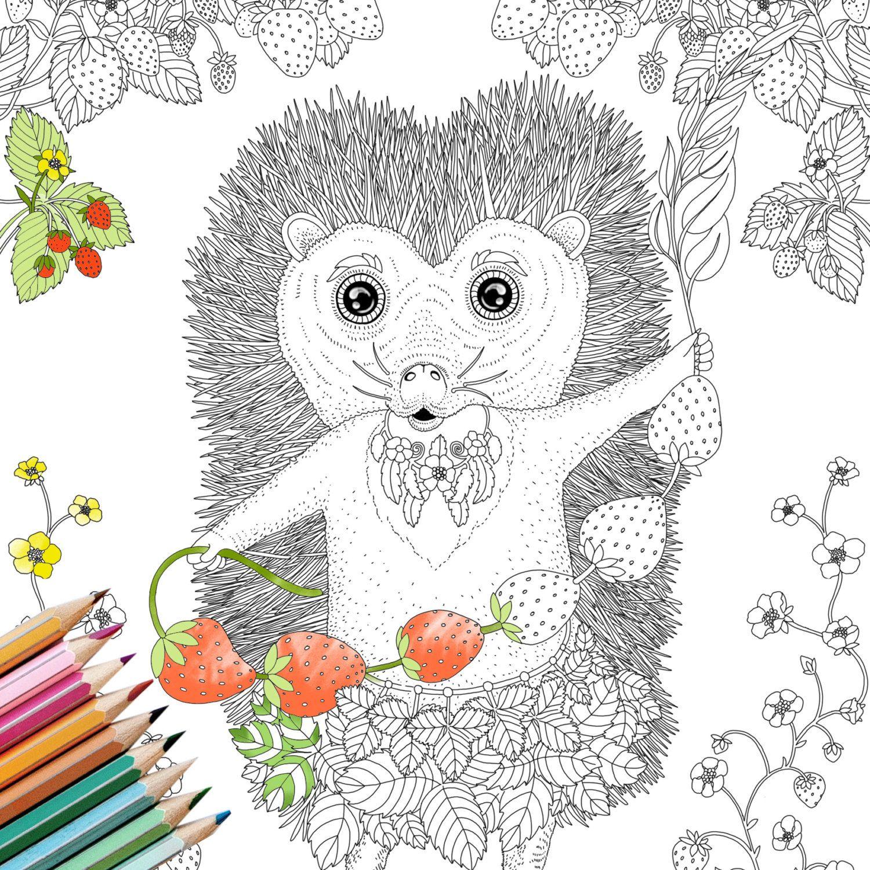 Coloring Page INSTANT DOWNLOAD Hedgehog