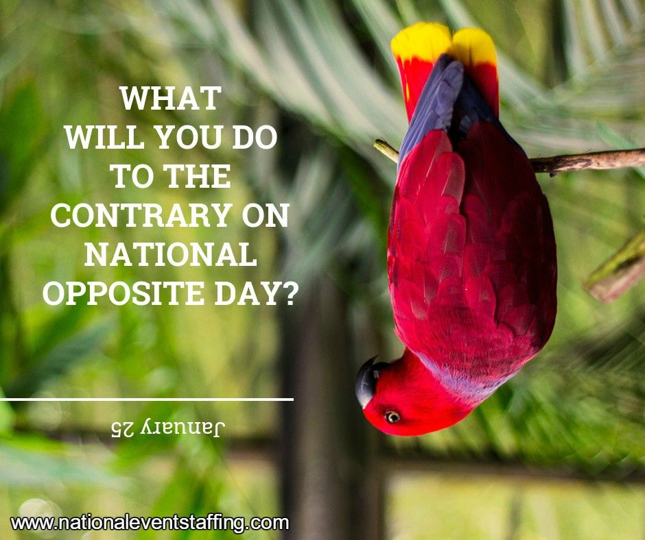 January 25 Nat'l Opposite Day What will you do?