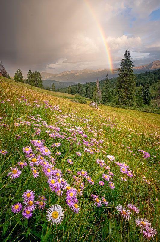 выяснится, картинки прекрасное лето что