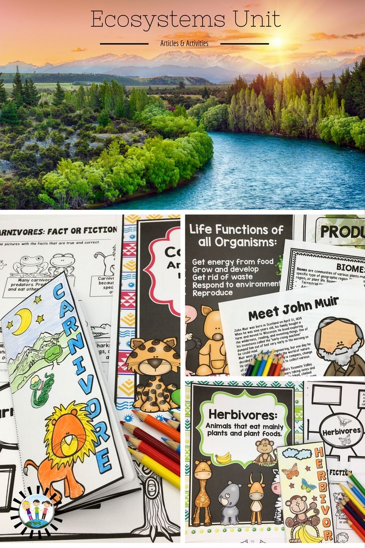 science biomes Worksheets / science / biology / biome facts this bundle contains 11 ready-to-use biome worksheets that are perfect for students who want to learn more about.
