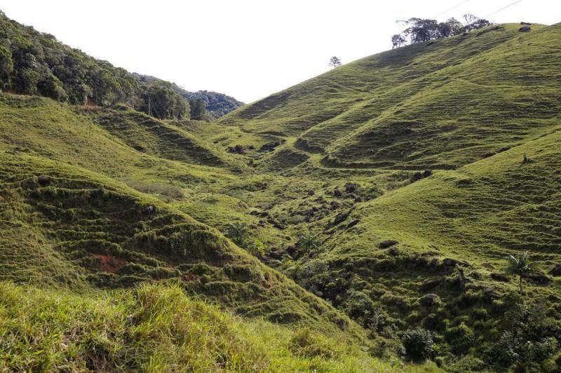 São Pedro de Alcântara encanta turistas pela sua beleza natural:imagem 2