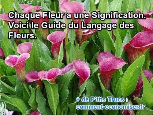 1001 Idees Tatouage Orchidee Le Desir A Fleur De Peau Tatouage Orchidee A Fleur De Peau Tatouage