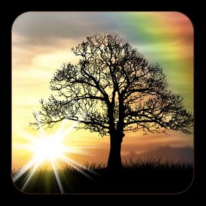 Image Result For Sunrise Sunrise Sunset Pics Pinterest Live