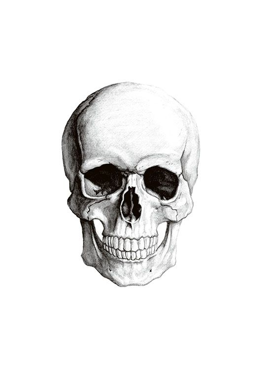 Print with a symbol of a skull.