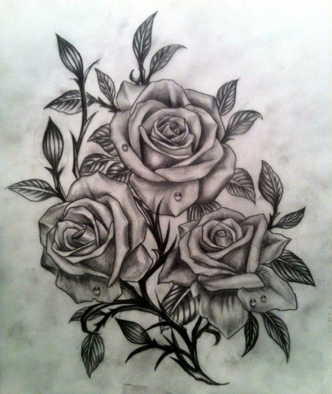 Dessin Tatouage Rose Tatouage Rose Dessin Tatouage Rose