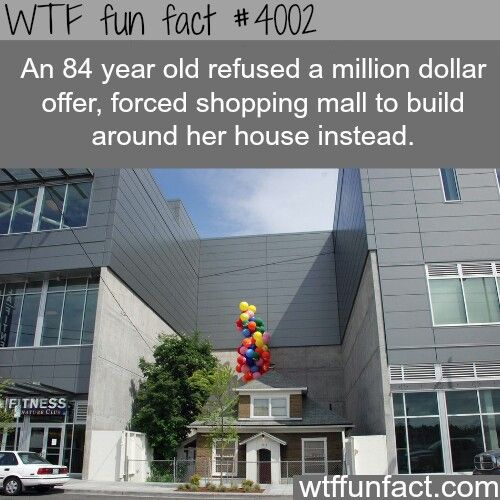 """The movie """"UP"""".This has got to be where they had the idea"""