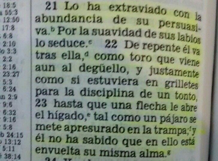 Proverbios 7:21 Escrito por el rey Salomon