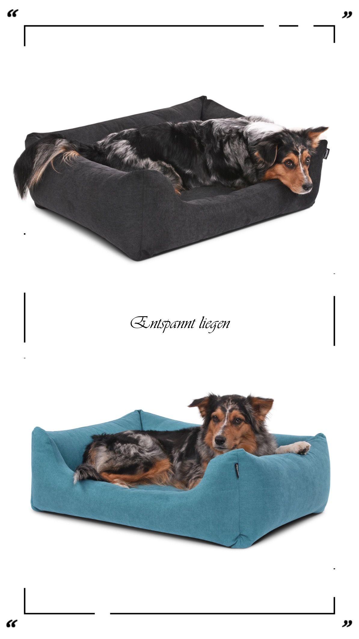 Hundebetten In Verschiedenen Grossen Und Farben In 2020 Hunde Kissen Hundekissen Hunde Bett