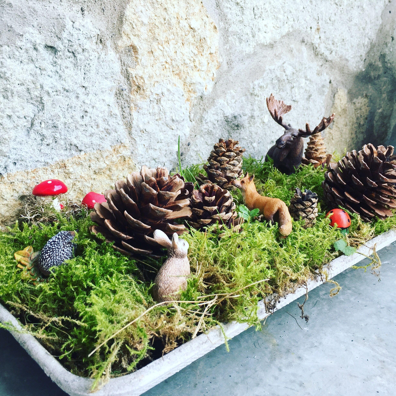Miniwald aus einem Untersetzer Blumenkasten, Moos, Tieren aus der Spielzeugkiste und Kinderhänden