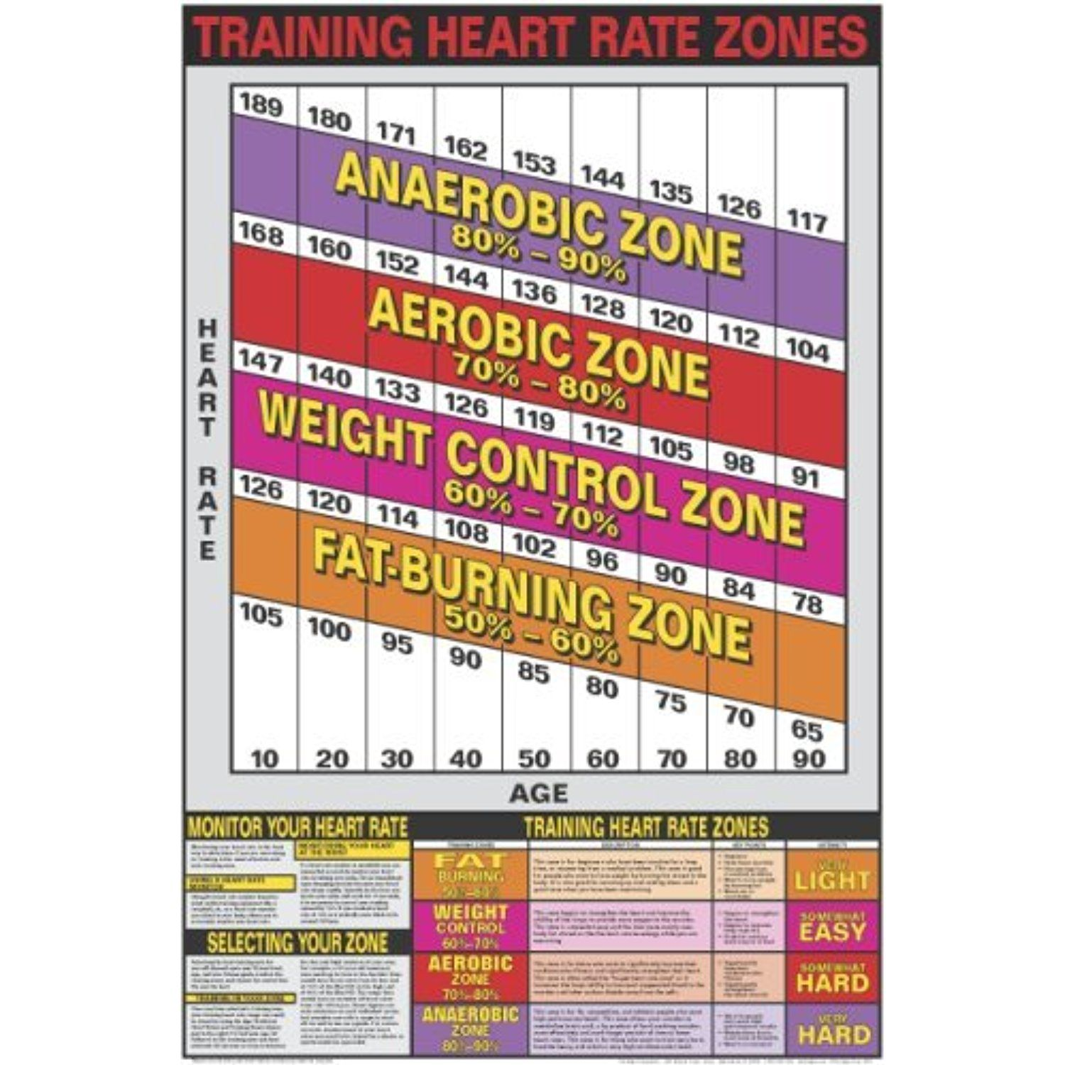 Heart Rate Zones 24 X 36 Laminated Chart Click Image To Review