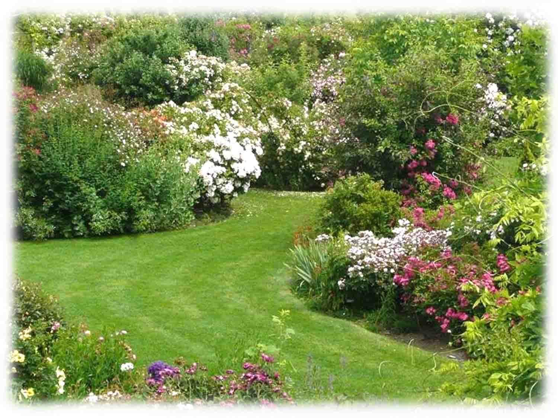 Les jardins de Roquelin   Jardins, Amenagement jardin, Jardin rose
