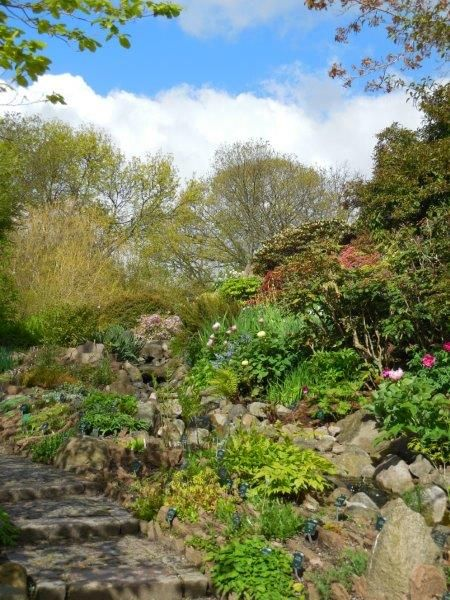 Botanische tuin Kopenhagen