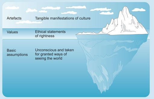 Management Perspective And Practice Culture Organizational Intercultural Essay On Values Value
