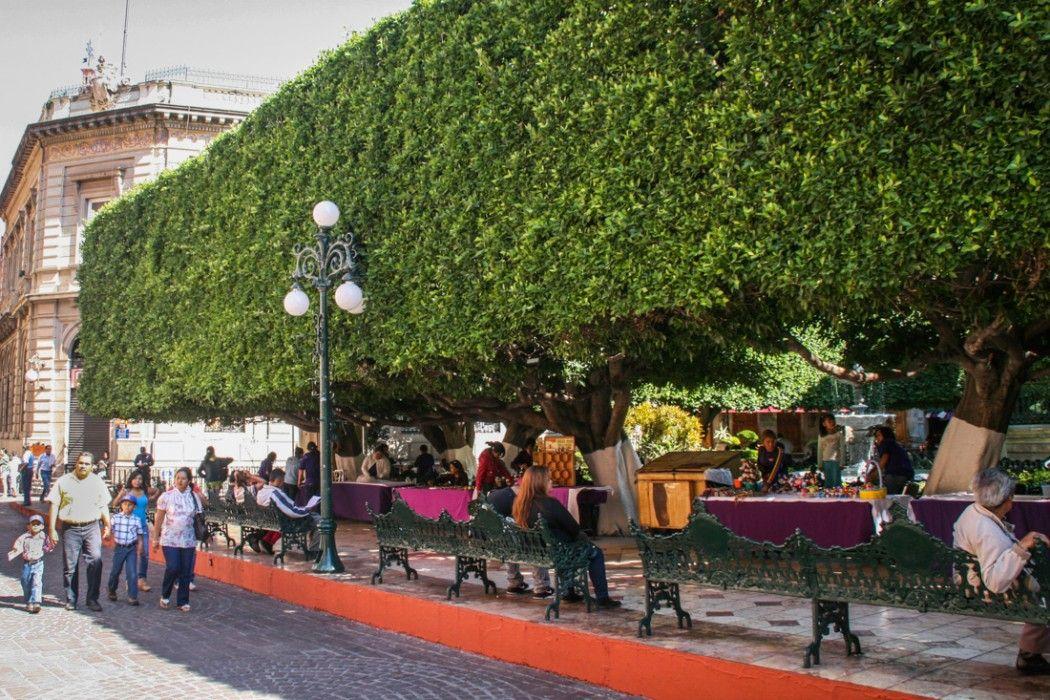Guanajuato the most beautiful city in mexico guanajuato for 7 jardines guanajuato