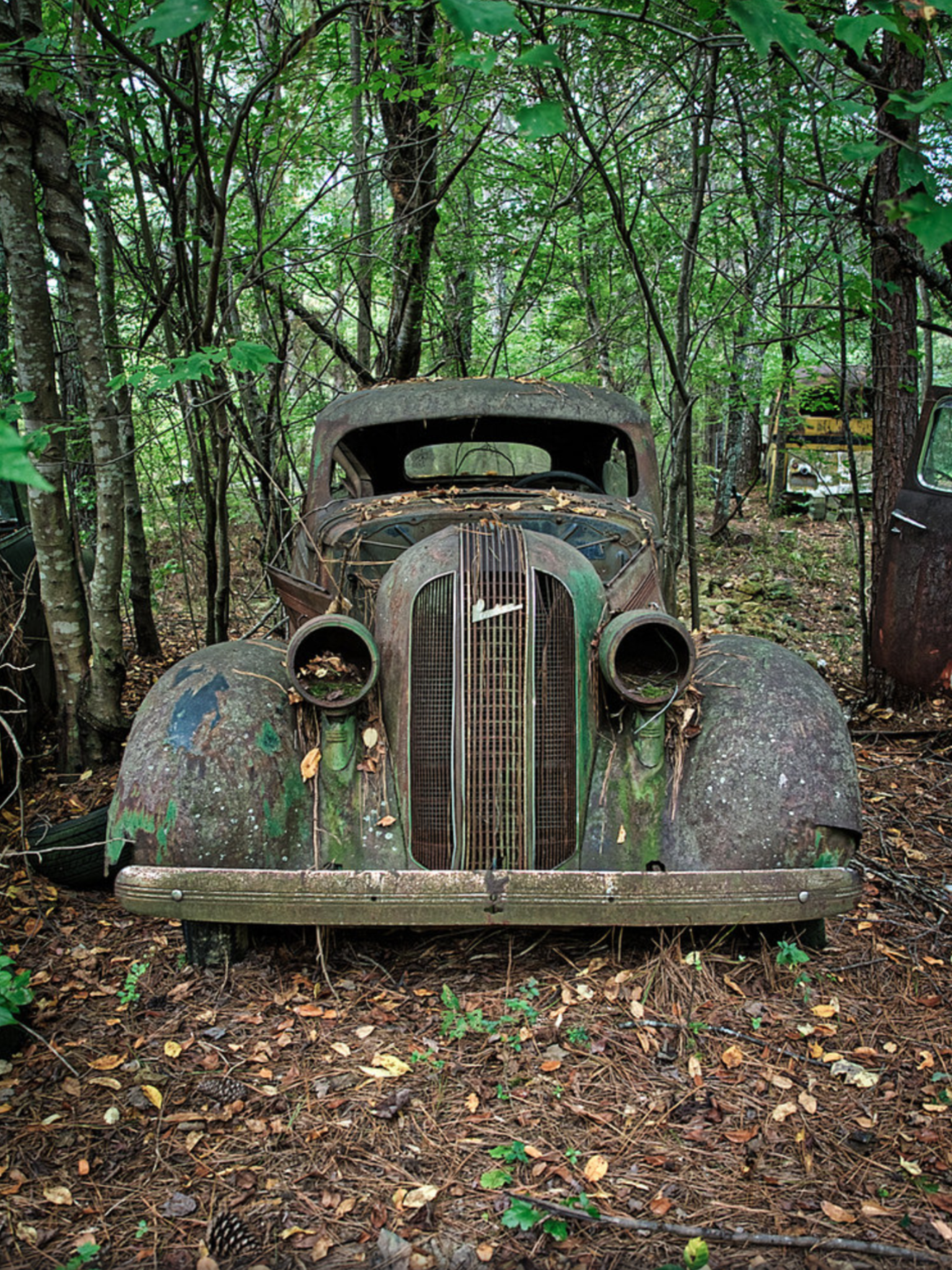 Abandoned Classic Cars : abandoned, classic, Rusty, City,, Georgia., Photo, Kong1933., Source, Flickr.com, Abandoned, Cars,, Classic