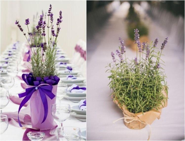 Duftender lavendel im topf auf dem tisch wedding - Dekoration lavendel ...