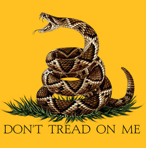 dont tread on me poster patriotic flag rattle snake tea party patriots