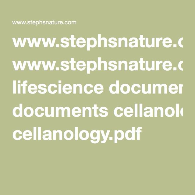 Cell Analogy Worksheet Planner