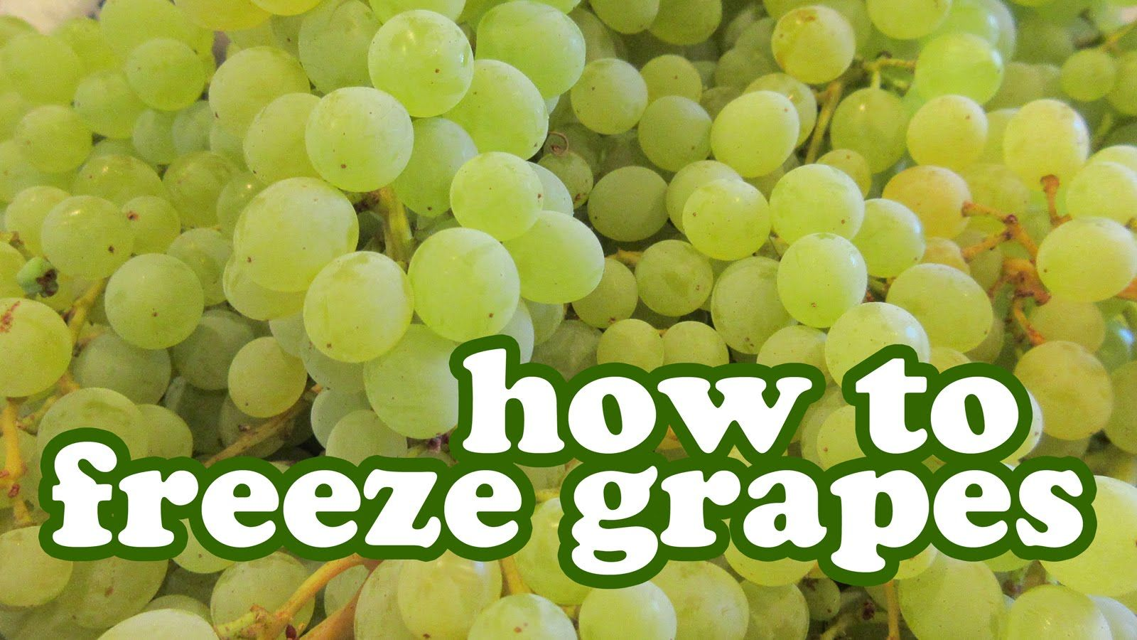 How To Freeze Grapes You Can Store Freezer Freezing