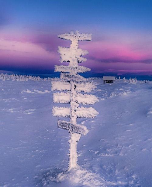 Which way to warm? by  Jørn Allan Pedersen