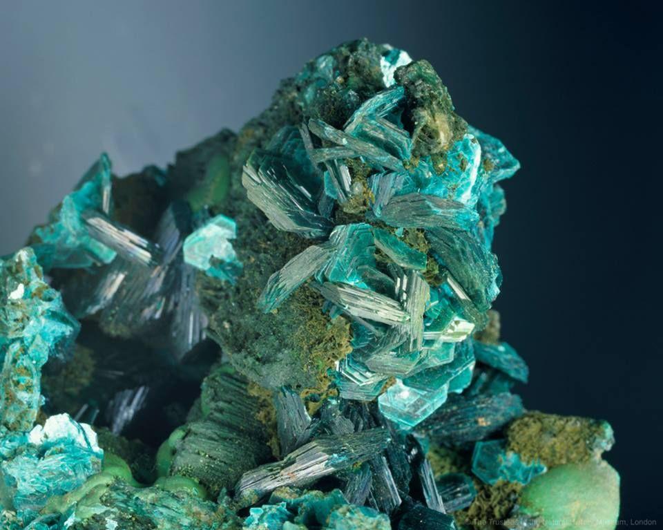 Chalcophyllite crystals.jpg (960×767)