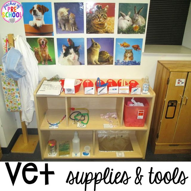 Classroom Pet Ideas : Vet animal hospital dramatic play pets preschool books