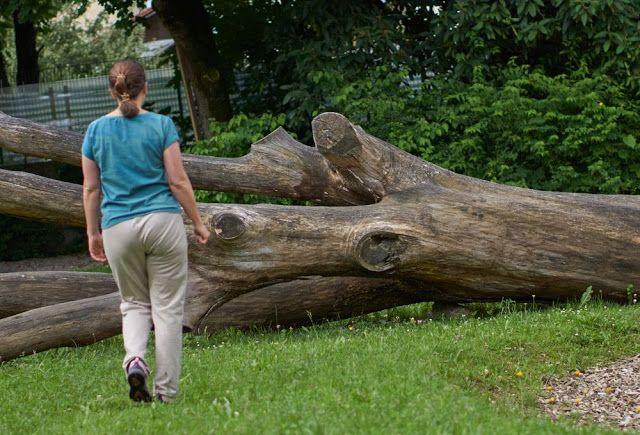 Molas: Eine Jogginghose mit dem letzten Fitzls meines Stoffes