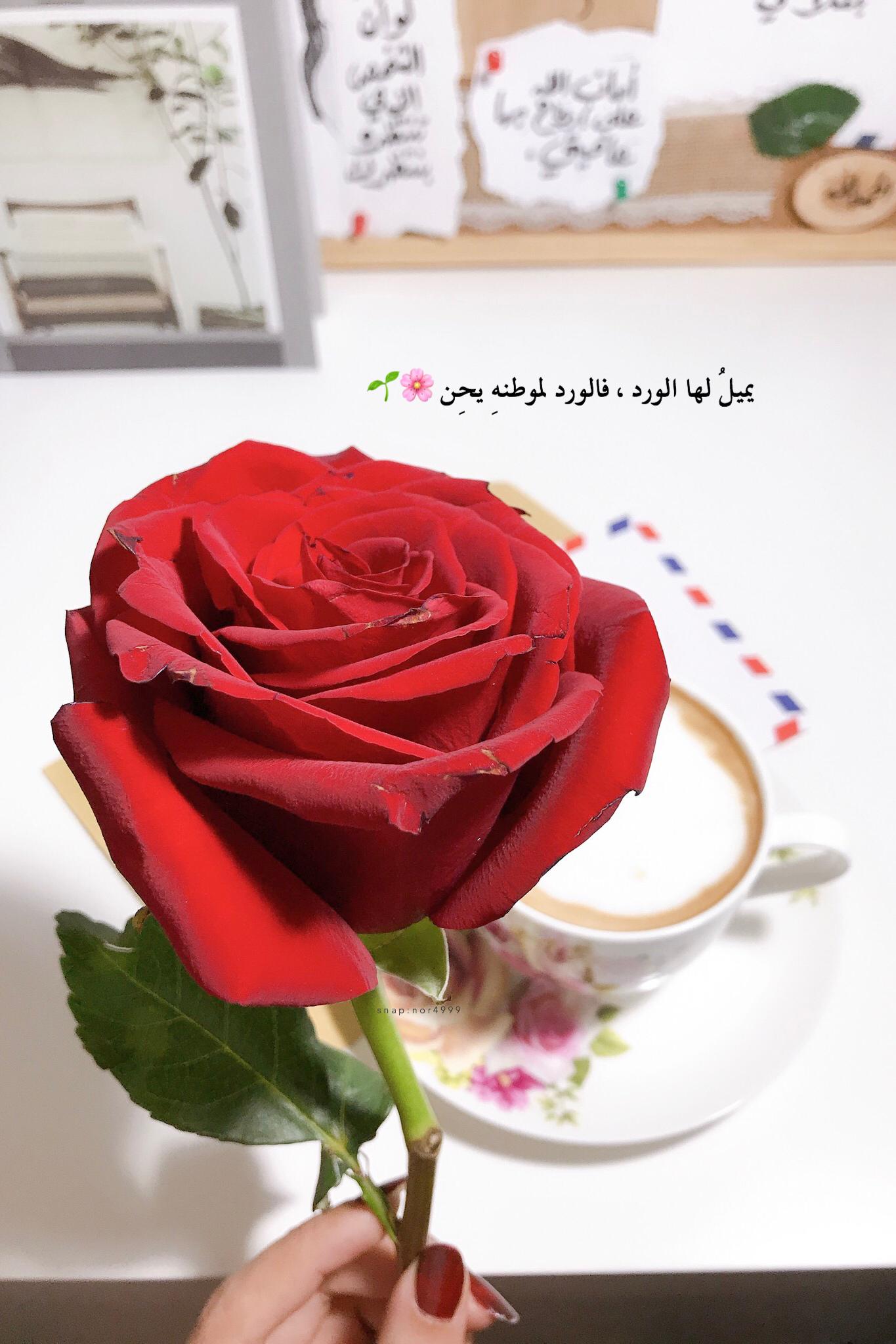 احن الي خبز أمي و قهوة امي Magic Words Words What Is Love