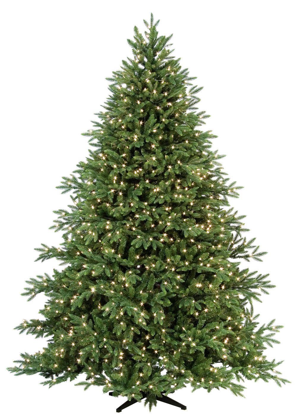 Carolina Fir Prelit Tree   christmas trees trees carolina by xanne ...