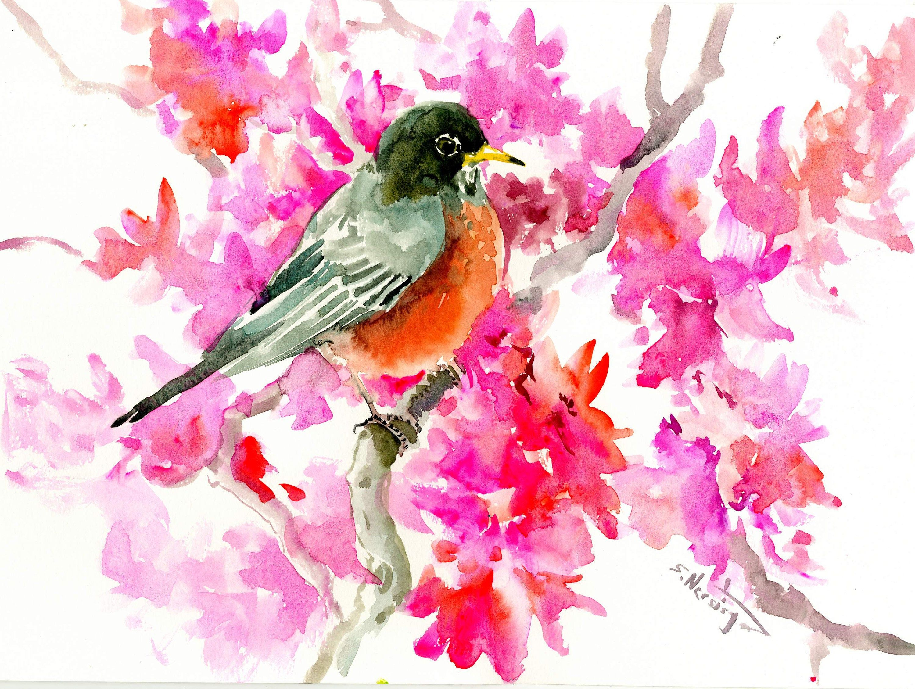 Robin Bird Original Watercolor Painting Watercolor Bird