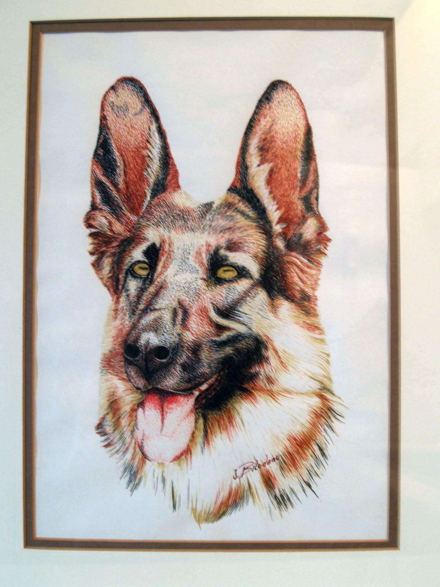Dessin l 39 encre d 39 un chien berger allemand dessins - Dessin d un chien ...